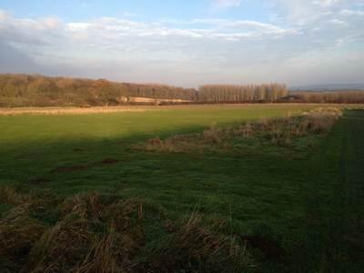 Bossall-View1